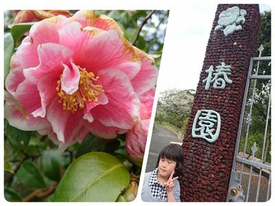 伊豆大島へ行ってきました♪