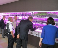 新横浜LED菜園視察会|埼玉県蕨市製造業の集まり