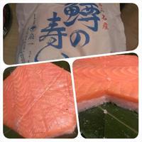 美味しい鱒寿司