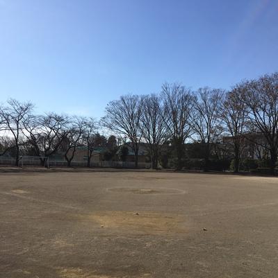 ホームグランド(常盤公園)