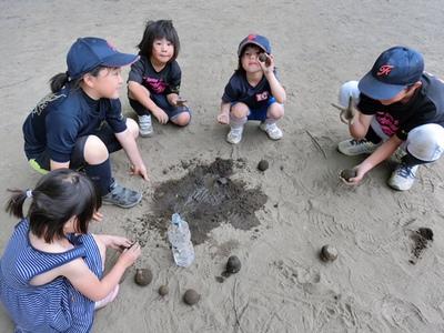BBQ & ボール投げ教室・体験会