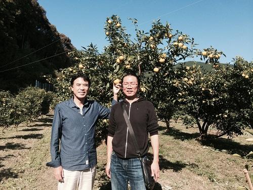 有機ゆずの産地、高知県へ。