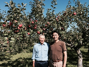 青森県、有機りんごの産地