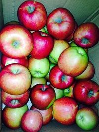 有機りんごで