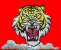 真紅の焔に猛虎が映えるオリジナル刺繍