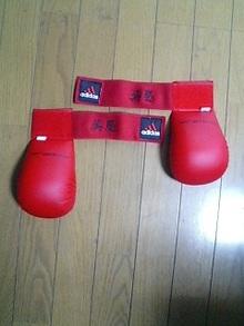 『キックボクシング』の、ししゅう。