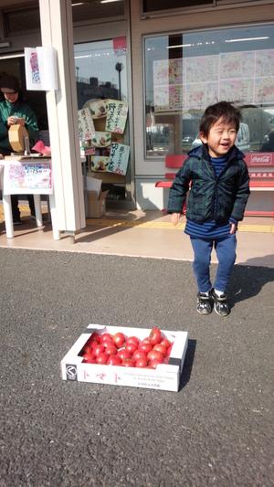 いちごとトマトで感激!!!
