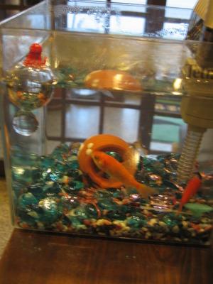 2匹の金魚が留守番です