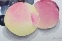 桃を描きました